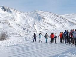 Gruppe von Schneeschuhlaufer oberhalb Visperterminen: Gruppe von Schneeschuhlaufer oberhalb Visperterminen