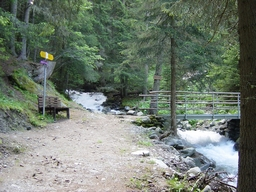 Ein Teil des Wegs im Sommer, Brücke über den Bach: Ein Teil des Wegs im Sommer, Brücke über den Bach