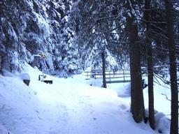Ein Teil des Weges im Winter, Brücke über den Back: Ein Teil des Weges im Winter, Brücke über den Back