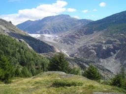 Auf dem Weg vom Aletschji zur Haengebruecke nach Riederalp: Auf dem Weg vom Aletschji zur Haengebruecke nach Riederalp