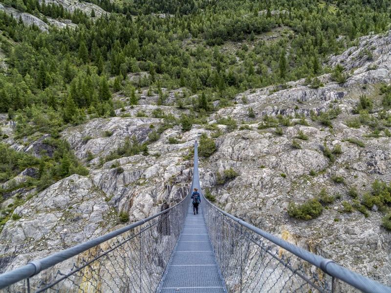 124 lang Hängebrücke am Fusse des Aletschgletscher: 124 lang Hängebrücke am Fusse des Aletschgletscher