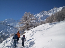 Winterwandern in Saas Fee: Winterwandern in Saas Fee