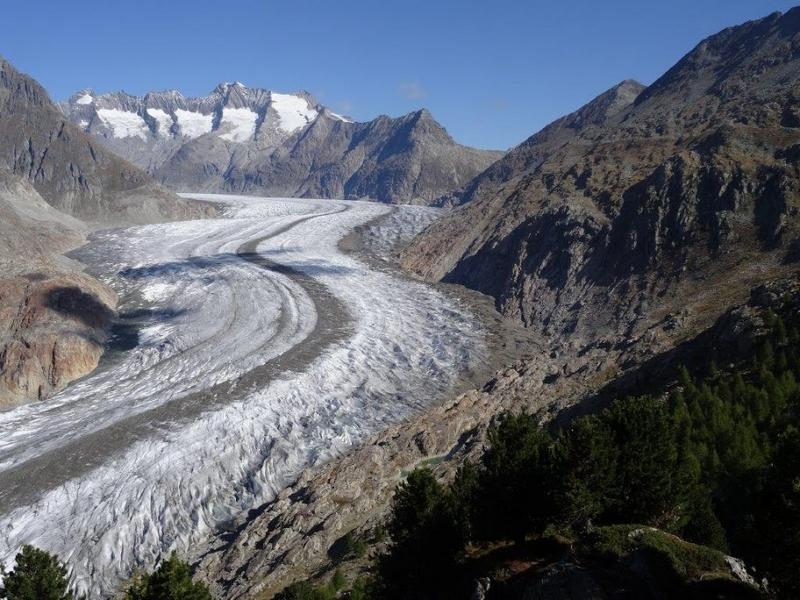 Das Belalpbord mit dem Aletschgletscher: Das Belalpbord mit dem Aletschgletscher