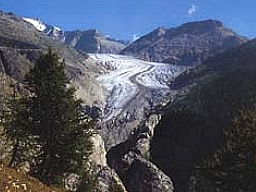 Sicht auf den Aletschgletscher: Sicht auf den Aletschgletscher