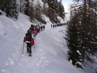 Col des Planches - La Crevasse - Col du Tronc - Col des Planches