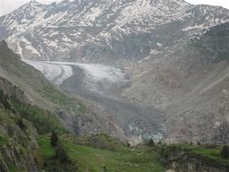 Gletscherzunge: Gletscherzunge