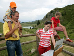Die Informations-Posten zeigen viel Spannendes über das Leben der Murmeltiere: Die Informations-Posten zeigen viel Spannendes über das Leben der Murmeltiere