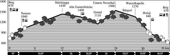 Profil: Brig - Ganterbruecke - Brig