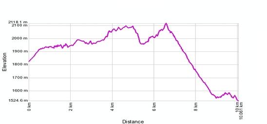 Höhenprofil: Rosswald - Bortelhütte - Berisal