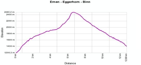Höhenprofil: Ernen - Alpe Frid - Eggerhorn - Binn