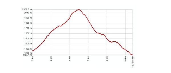 Höhenprofil: Mund - Roossee - Meinimatte - Brischeru - Mund