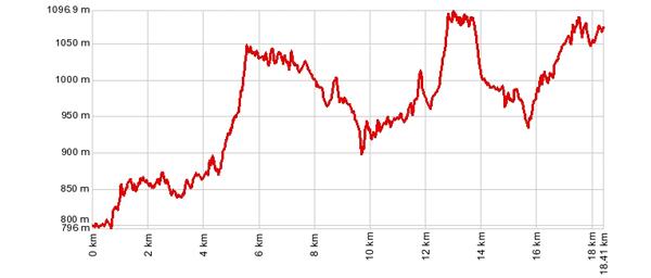 Höhenprofil: Südrampenwanderung Lalden - Hohtenn