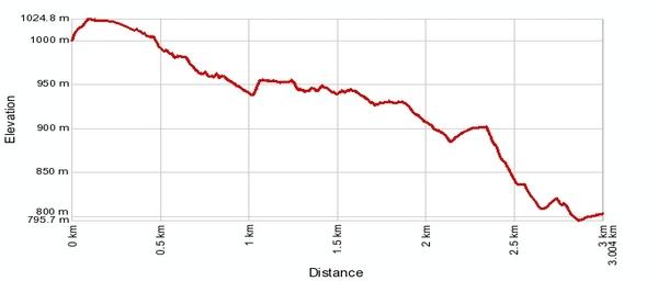 Höhenprofil: Suone Badneri, Mund - Warbflie - Lalden Bahnhof